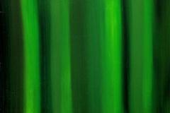 Ode aan de lieve Dames Groen